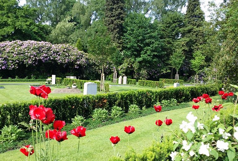 Friedhof Ohlsdorf / Am Blumenband