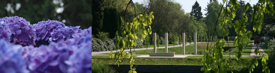 Friedhof Ohlsdorf Linne-Denkmal