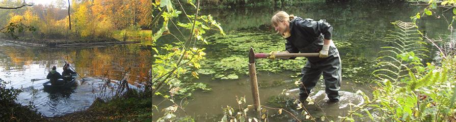 Freiwilliges ökologisches Jahr auf dem Friedhof Ohlsdorf